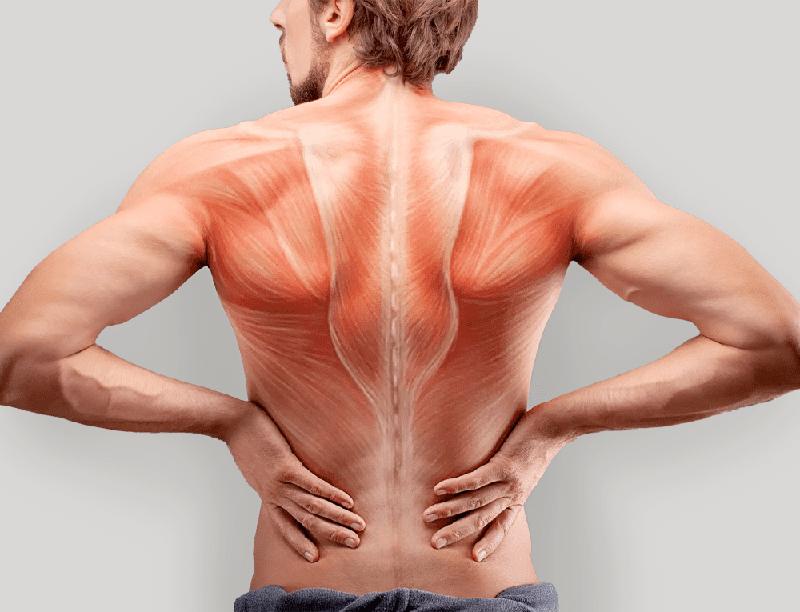 Причины и симптомы миозита Миозит — это воспалительный процесс в мышце, возникающий в результате перенесенных инфекционных заболеваний.